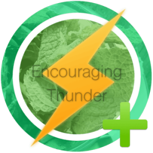 Encouraging Thunder Award//Thank You!